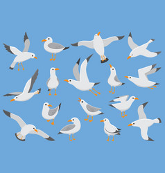 Atlantic white seabird fly at sky beach seagull vector