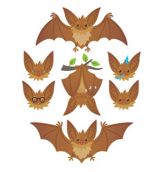 bat in various poses flying hanging brown bat vector image vector image
