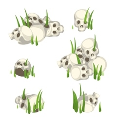 Few piles of human skulls in the grass vector image