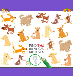 find two identical dogs activity for children vector image