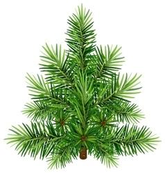 Green Christmas pine tree vector image