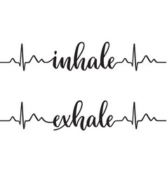 Inhale and exhale vector