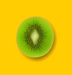 Kiwi fruits isolated vector