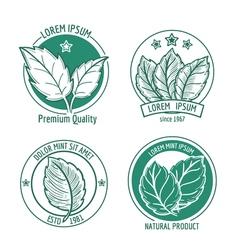 Mint leaf logo icons or menthol spearmint labels vector