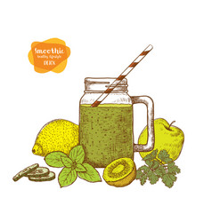 smoothie detox water and drinks sketches of vector image