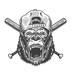 vintage angry gorilla head in cap vector image