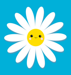White daisy chamomile with face head cute flower vector