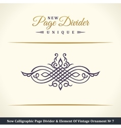 New Calligraphic Page Dividers and Elements of vector image vector image