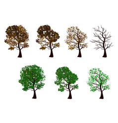 the set of trees four seasons vector image vector image