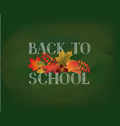back to school autumn leaves fall holiday vector image