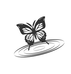 butterfly with water vector image