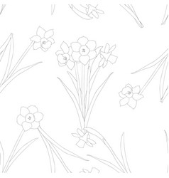Daffodil - narcissus on white background vector