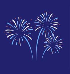 firework pattern display celebration vector image