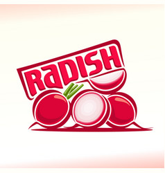 Logo for radish vector