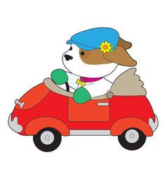puppy car vector image vector image