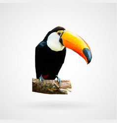 Colorful polygonal toucan bird vector
