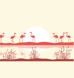 Flamingo scene on lake silhouette vector