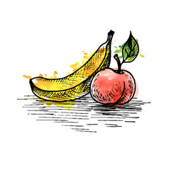 ink drawing banana and peach vector image