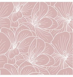 Pink and white geranium flowers line drawing vector image
