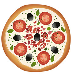 pizza with mozzarella cheese tomato and black vector image