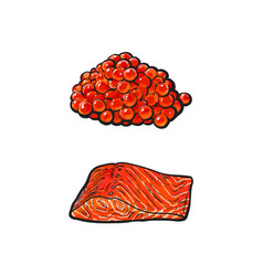 Sea red salmon fish meat fillet caviar set vector