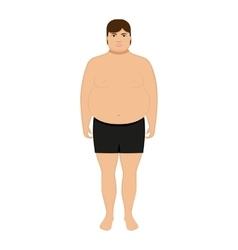 Cartoon fat man adult big boy vector