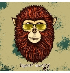 Hipster monkey with yellow sunglasses vector image vector image