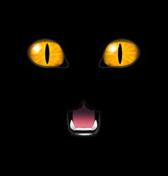 realistic cat face on a black background vector image