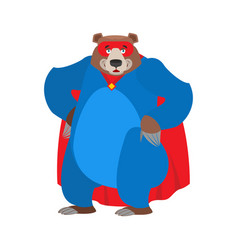 Bear superhero super grizzly in mask and raincoat vector