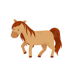 Brown horse pony on a white vector