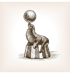 Circus seal with ball sketch vector image