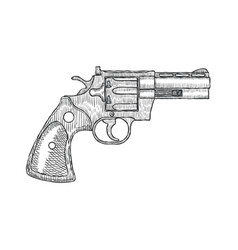 hand drawn vintage revolver gun firearm pistol vector image