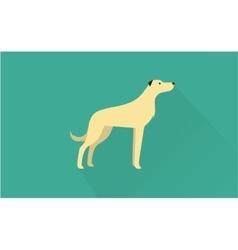 irish wolfhound icon vector image vector image