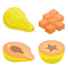 papaya icons set isometric style vector image
