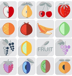 set of icons fruit flat style vector image