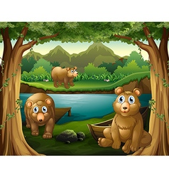 Three bears living by the river vector image