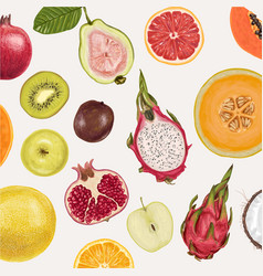 fresh juicy collection of fruits vector image
