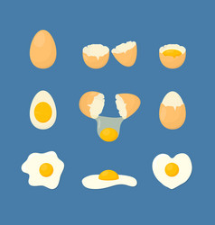 Cartoon fried and fresh eggs set vector