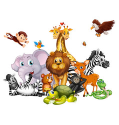 Cute animals on white background vector