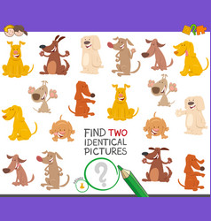 find two identical dogs game for children vector image