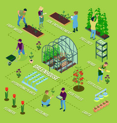 Greenhouse isometric flowchart vector