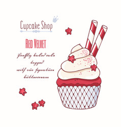 Hand drawn red velvet cupcake vector