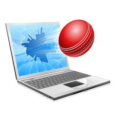 cricket laptop broken screen concept vector image vector image