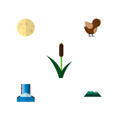 icon flat natural set of reed moon waterfall and vector image