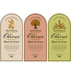 set of labels for olives vector image vector image