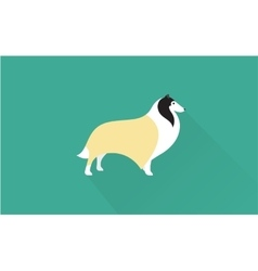 Collie icon vector