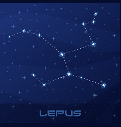 Constellation lepus hare night star sky vector
