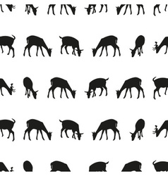 feeding fallow deer silhouette of animal seamless vector image