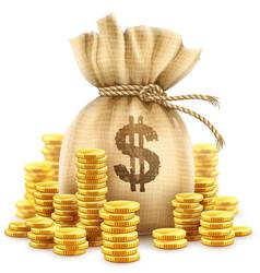 Full sack cash money gold vector