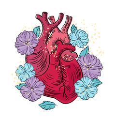 Heart health care medicine lifestyle love i vector